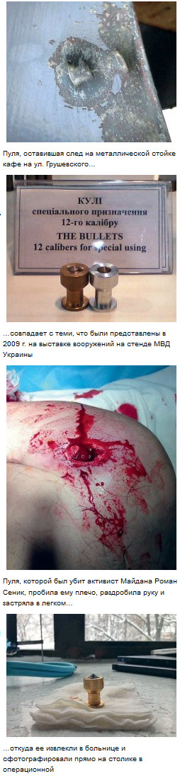 Активистов Майдана расстрелял из огнестрельного оружия «Беркут» - расследование россиян