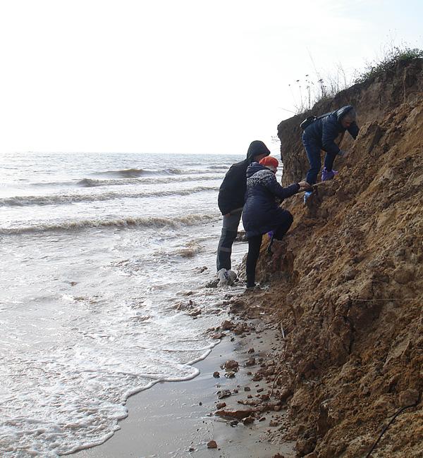 это находки в азовском море фото франжипаном
