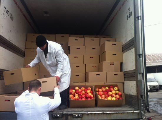 Фуру с польскими яблоками задержали в Пскове после погони